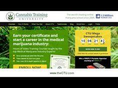 Enroll in Cannabis College Now | Cannabis Training University