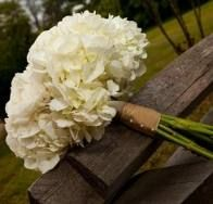Google Image Result for http://thefrenchbouquettulsa.com/blog/wp-content/uploads/2010/05/White-Bridal-Bouquet-of-Roses-Hydrangea-and-Ranunculus-245x235.jpg