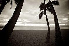 Hawaii 2012 Timeless 3009