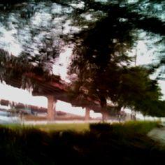 A blurry day