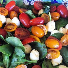 Balsamic tomato bocconcini & spinach salad all part of a magnificent birthday lunch courtesy of @priyanibond. #happybirthday #delicious #tomatoes #salad