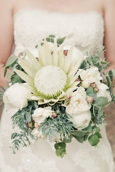 White king protea bouquet with eucalyptus and peonies Protea Wedding, Flower Bouquet Wedding, Flor Protea, Protea Bouquet, Australian Native Flowers, Bride Bouquets, Bridal Flowers, Beautiful Flowers, White Flowers
