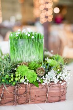 Venue: Don Strange Ranch  Event Consultant: Tracy French - French Connection Events  Dress Designer: Essence of Australia  Hair and Makeup Artist: LucieMarie  Floral Designer: Mandarin Flower  Cake: The Art of Cake