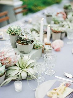 Pastel, succulent wedding inspiration