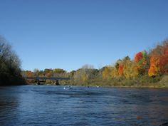 Newaygo, MI : Muskegon River in the Fall
