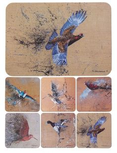 Game Bird Mats and Coaster set £38.00 Add a touch of art to your table with our great quality tablemats & coasters. With stunning designs by Jack Fetherstonehaugh depicting British wild game birds.