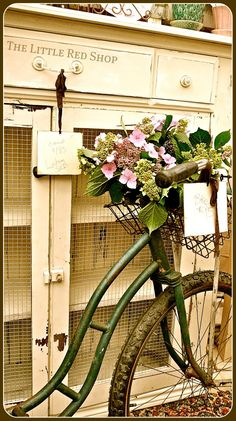 definitely need an old bike with flowers in the basket