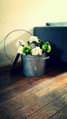 Bloemen in kan