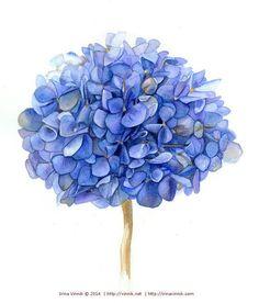 Art: Watercolor flowers, hydranga on Pinterest | 32 Photos on blue ...
