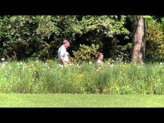 Jardins sans Limites (Moselle Tourisme) - YouTube