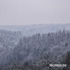 Markus Medinger Picture of the Day | Bild des Tages 01.03.2018 | www.mkmedi.de #mkmedi  Winterfrost im Schurwald #winterwonderland #winterwunderland #winter #schnee #snow  #365picture #365DailyPicture #pictureoftheday #bilddestages  #stuttgart500p #wirzeigens #SoistS #stuttgartplaces #stuttgartblick  #instagood #photography #photo #art #photographer #exposure #composition #focus #capture #moment  #stuttgart #badenwuerttemberg #germany #deutschland  @badenwuerttemberg @visitbawu @0711stgtcty…
