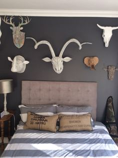 Teenage boys bedroom with artificial animal heads