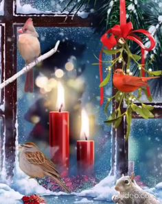Holiday Quotes Christmas, Happy Christmas Wishes, Its Christmas Eve, Merry Christmas Images, Merry Christmas My Friend, Vintage Christmas Images, Christmas Scenes, Magical Christmas, Christmas Candles