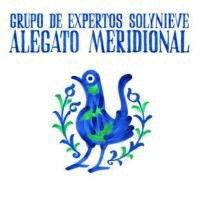 Grupo de Expertos Solynieve - Alegato Meridional