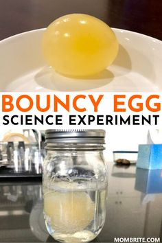 What happens when you submerge a raw egg in vinegar for days? Check out how you can make a bouncy egg with your kids in this science experiment. day toddlers Bouncy Egg: Cool Science Experiment for Kids Science Experiments For Preschoolers, Science Projects For Kids, Science Crafts, Easy Science Experiments, Science For Kids, Experiments For Kids Easy, Preschool Science Activities, Stem For Kids, Kid Projects