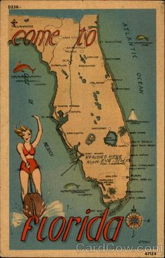 Old Florida post card  I remember when Florida had these few towns