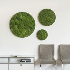 Unsere Kugelmoos Ellipsoide überzeugen durch einen einzigartigen 3D-Effekt. Moss Wall Art, Moss Art, Plant Wall, Plant Decor, Church Interior Design, Green Wall Decor, Decoration Chic, Inspiration, Home Decor