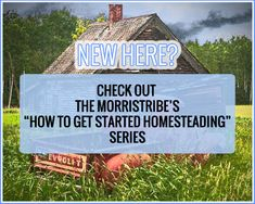 The Morris Tribe — sustainable living, homesteading, sustainable homemaking (LOVE THIS LOOK)
