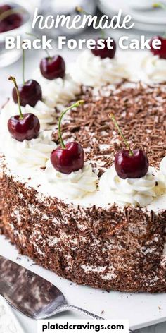 Black Forest Cake is a traditional German dessert made with chocolate sponge cake layers filled with whipped cream and cherries. This delicious cake recipe is completely made from scratch and perfect for special occasions! Fun Easy Recipes, Popular Recipes, Easy Desserts, Delicious Recipes, Best Comfort Food, Comfort Foods, Spring Recipes, Holiday Recipes, Traditional German Desserts