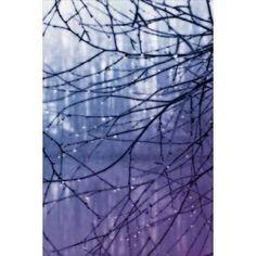 Droplets I Canvas Art - Alan Hausenflock (12 x 18)