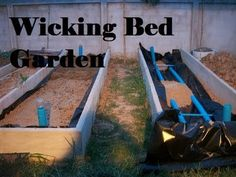 Wicking beds.. How to make IBC self watering garden beds.. .. - YouTube