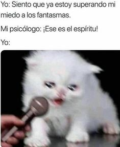Funny Spanish Memes, Spanish Humor, Haha Funny, Funny Memes, Jokes, Kpop Memes, Foto Bts, Ms Gs, Best Memes