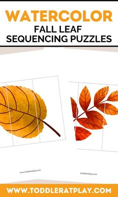 These Watercolor Fall Leaf Sequencing Puzzles are fun, colorful and great for improving and exercising cognitive skills and fine motor skills. Sequencing puzzles help toddlers, preschoolers and kindergarteners think and learn! *You'll receive a PDF file with 6 puzzles! Best to use colored printer. Fine Motor Skills, Preschool Activities, Autumn Leaves, Puzzles, Kindergarten, Homeschool, Watercolor, Learning, Fall