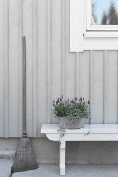 Lavender Plant in a Zinc Pot Garden Inspiration, Garden Ideas, Hacienda Style, Scandi Style, Sustainable Architecture, Nature Decor, Ikebana, Wabi Sabi, Scandinavian Design