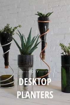D I Y DESKTOP PLANTERS A bottle cut in half at the right point can be used to create a 2-piece planter that drains into itself. These planters are perfect for herbs and would look great on a kitchen windowsill. If you want to green your office space try some simple by @BenUyeda