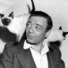 Peter Lorre & Siamese Kittens