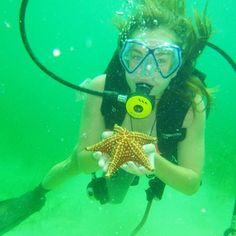 Discovering life under the sea in #BocasDelToro with alumna and future Outdoor Leader Semester student Bailey!