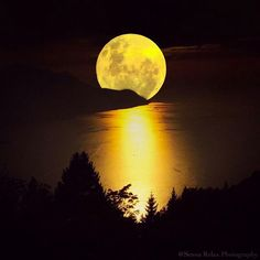 Into the Full Moon