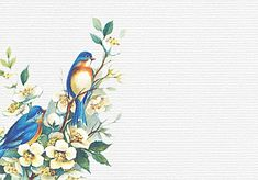 bird painting background, Painting, Birds, Color Of Lead, Background image