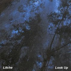 Look Up by Litche