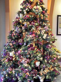fabulous tree - gorgeous colors