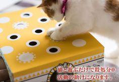 Coisas Variadas Para Pets: Brinquedos Para Exercitar os Gatos