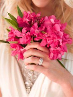 detail of Bridal Bouquet of Bougainvillea Cyprus Wedding, Our Wedding, Wedding Ideas, Dream Wedding, Wedding Inspiration, Bougainvillea Wedding, Wedding Flowers, Bride Bouquets, Bridesmaid Bouquet