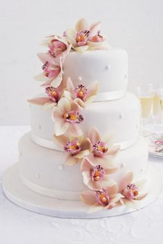 I can do this with Styrofoam and a lot of rolled fondant! Orchid Wedding Cake, Orchid Cake, Wedding Cakes With Flowers, Cake Wedding, Gorgeous Cakes, Pretty Cakes, Amazing Cakes, Cupcakes, Cupcake Cakes