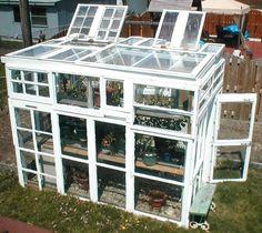 DIY-Greenhouses-apieceofrainbowblog (15)