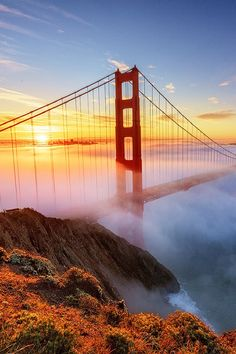 Early morning fog covers the Golden Gate Bridge at sunrise - San Francisco, California  (by Jarrod Castaing on 500px)