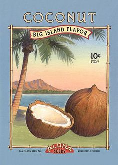 Vintage Hawaiian Aloha Seed Packet Prints Pineapple Coconut Ginger - Set of 3- Digital Reproductions 5 x 7. $20.00, via Etsy.