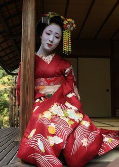 geisha-kai:  November 2014: maiko Mamefuji of Tama okiya in Gion Kobu (SOURCE)