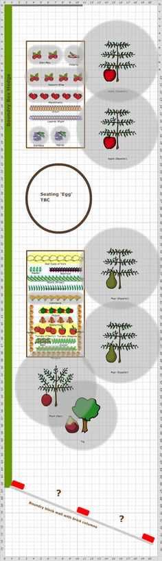 Garden Plan - 2014: Veg & Fruit Patch, more permaculture principles at work here with lovely espaliers and perennial fruit beds, not that much space but what there is is used well.