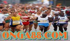 보너스머니♠️♠️♠️  ONGA88.COM  ♠️♠️♠️보너스머니: 보너스머니♠️♠️♠️  ONGA88.COM  ♠️♠️♠️보너스머니 Free Blog, Wrestling, Thoughts, Photo And Video, Lucha Libre, Ideas