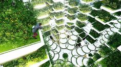 Aprilli Design Studio's Urban SkyFarm is a living machine, helping improve environmental quality by filtering water & air, providing edible greens & producing renewable energy. Dense urban developments will benefit from the additional green space by feeling a reduction in heat accumulation, storm water runoff & carbon dioxide. As a net zero facility, its aim is to operate only with renewable solar & wind energy. Harvesting from hydroponic syst...