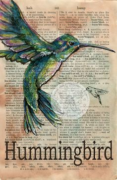 Hummingbird Mixed Media Drawing on Distressed, Dictionary Page - flying shoes art studio  www.etsy.com/shop/flyingshoes