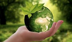 Climate reality leader James Murphy on how communicators and marketers can implement sustainability programs and gain employees support. Green Earth, Happy Earth, Carbon Footprint, Food Packaging, Earth Day, Planet Earth, Sustainable Living, Sustainable Food, Consumerism