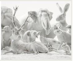 Nymphenburg Porcelain Animals