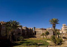Gardens in old Sanaa town - Yemen by Eric Lafforgue, via Flickr