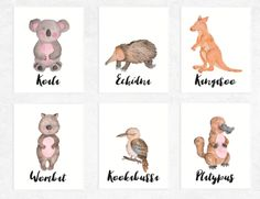 Australian Animal Printables Watercolour 6 Set   https://www.vivabop.co.uk/products/australian-animal-printables-watercolour-6-set